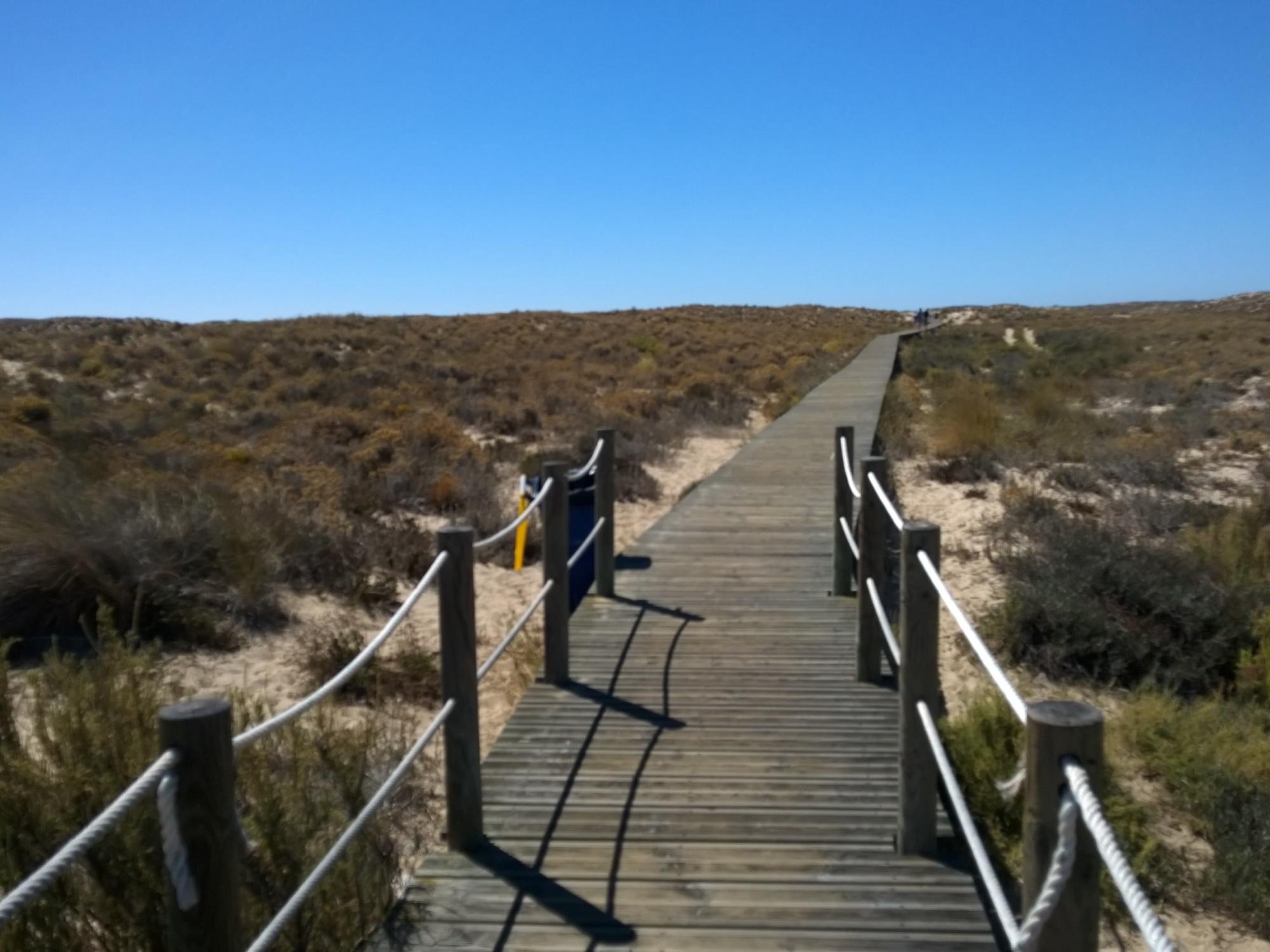 Ilha Culatra, Algarve