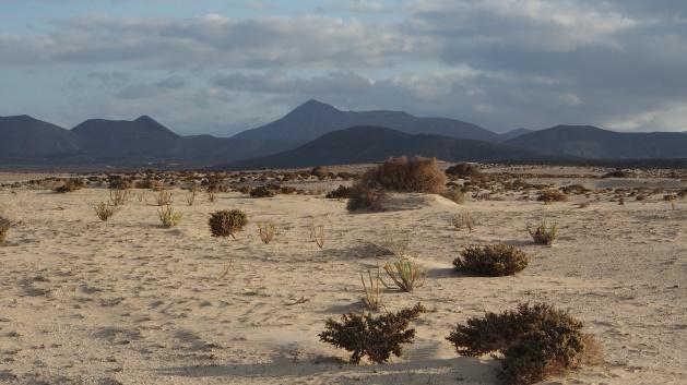 Parque Natural Corralejo