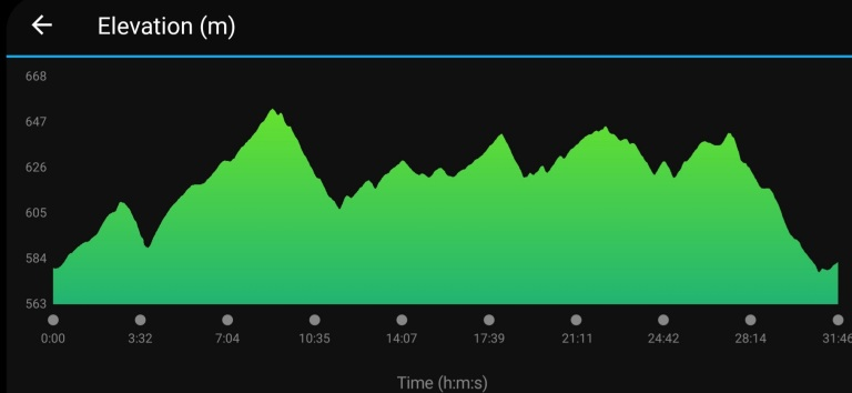 Bare Burro 5k Elevation Chart